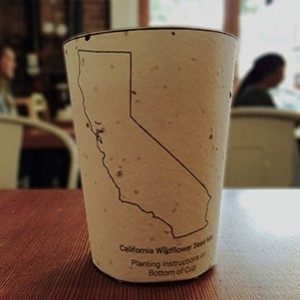 biodegradable-coffee-cup-300x300[1]
